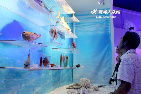 生命健康产业领域的创新能力,创建包含大海洋基因平台,国家海洋实验室