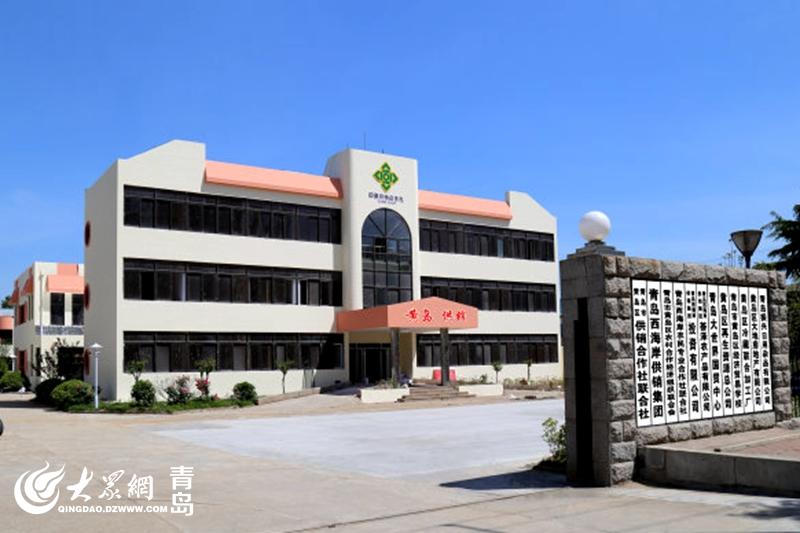 青岛西海岸新区供销社综合改革成果丰 构建全产业链发展体系