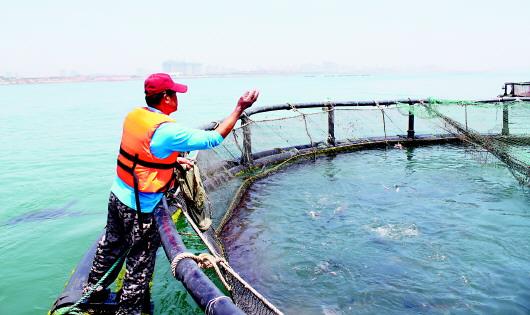 """海底荒漠10年""""脱贫""""记:休闲海钓拉动渔业转型"""