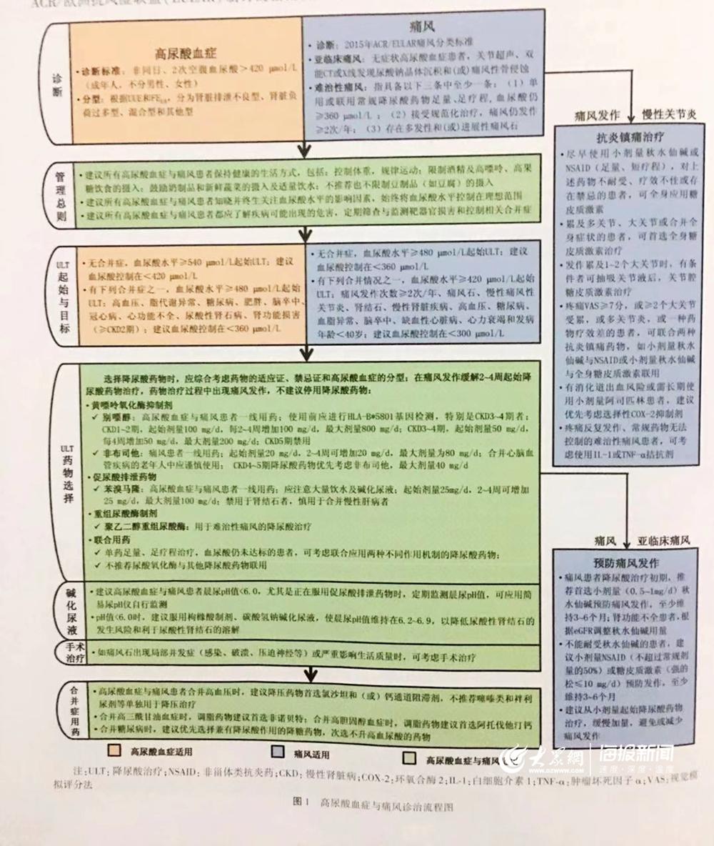 《中国高尿酸血症与痛风治疗指南(2019)》正在青宣告 首提亚临床痛风、难治性痛风观点